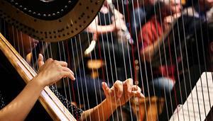 Guy Magrath Harp Prize
