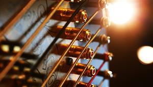 Harp Chamber Music