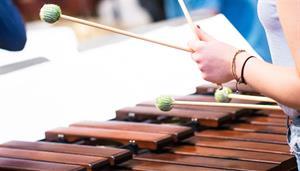 Timpani and Percussion Open Day