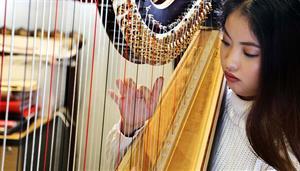 Harp Open Day